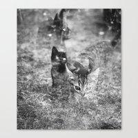 Les Chats Fantômes Canvas Print