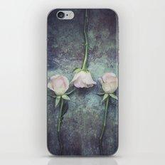 Three iPhone & iPod Skin