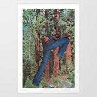 Sequoia Chic Art Print