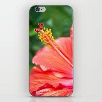 Tropical Bloom iPhone & iPod Skin