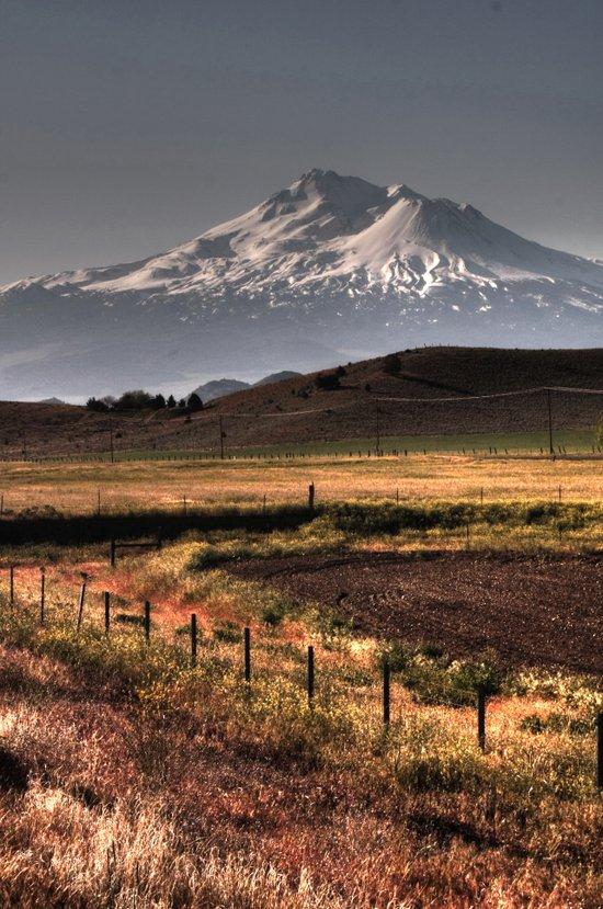 Mt Shasta Art Print