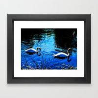 Swanning About Framed Art Print