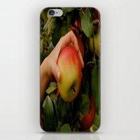 The Perfect Pick iPhone & iPod Skin