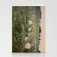 Forgotten Wishes Stationery Cards