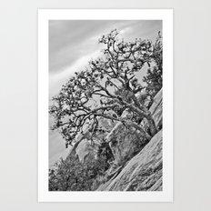 Enchanted Rock Art Print