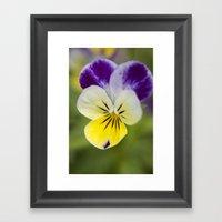 Macro flower 1 Framed Art Print