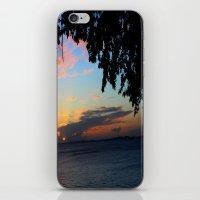 SUNSET BETWEEN TREES. iPhone & iPod Skin
