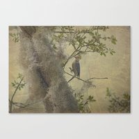 In The Moss Canvas Print