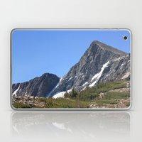 Mount Dana Laptop & iPad Skin