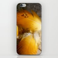 Yellow Feathers iPhone & iPod Skin