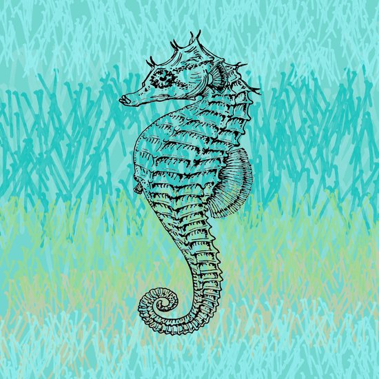 Seahorse ~ The Summer Series Art Print
