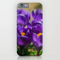 iPhone & iPod Case featuring Spring Colors  by Ekaterina La