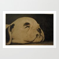 Puppy On The Floor Board… Art Print