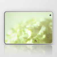 {delicate} Laptop & iPad Skin
