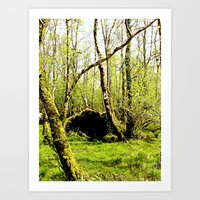 Ireland: Nook In The For… Art Print