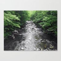 River Runs Canvas Print