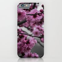 cherry blossom iPhone & iPod Cases featuring Cherry Blossom by Michelle McConnell