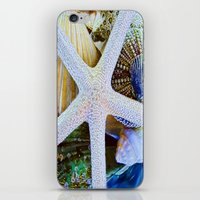 All the Colors of the Sea iPhone & iPod Skin