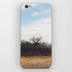 Cuernavaca. México. iPhone & iPod Skin