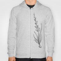 Gladiolus Flower Hoody