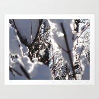 Glitter Reeds Art Print