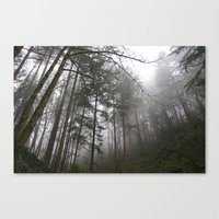 Forest Fog in Portland Canvas Print
