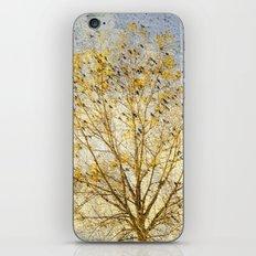 The Bird Tree iPhone & iPod Skin