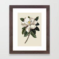 Within a Flower Framed Art Print