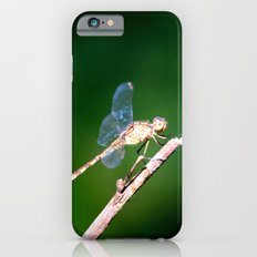 Invisible Wings iPhone 6 Slim Case