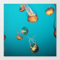 Magical Medusas Canvas Print