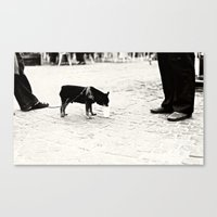 Dog On The Street Canvas Print