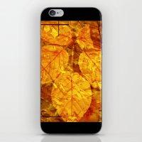 Autumn Memories In Orang… iPhone & iPod Skin
