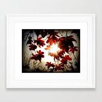 Autumn's Last Stand Framed Art Print