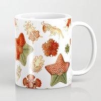 Sea Stars And Star Fish Mug