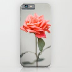 GUATEMALA ROSE iPhone 6 Slim Case