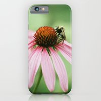 iPhone & iPod Case featuring Summer memories by Felicity Crew
