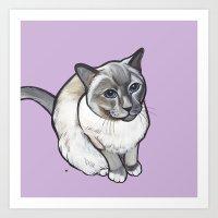 Mulder the Siamese Cat Art Print