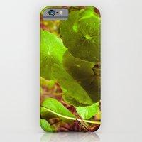 Post-Shower iPhone 6 Slim Case