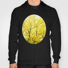 Yellow Splendor Hoody