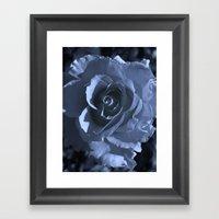 Roses XI Framed Art Print