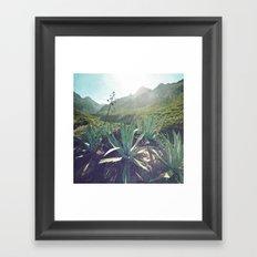 Anaga Framed Art Print