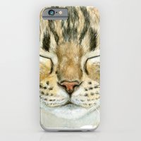 Sleeping Tabby Cat  830 iPhone 6 Slim Case