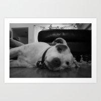 Dawg: 1 Art Print