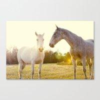 Two Horses Fine Art Phot… Canvas Print