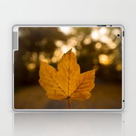 One Leaf - Autumn Laptop & iPad Skin
