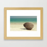 Tropical Treasure Framed Art Print