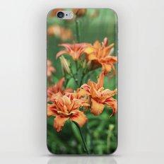 Deja Vu In Orange iPhone & iPod Skin