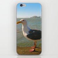 Alcatraz iPhone & iPod Skin