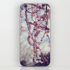 Niagara Blossoms iPhone & iPod Skin