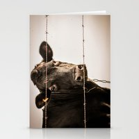 How Now, Brown Cow? Stationery Cards